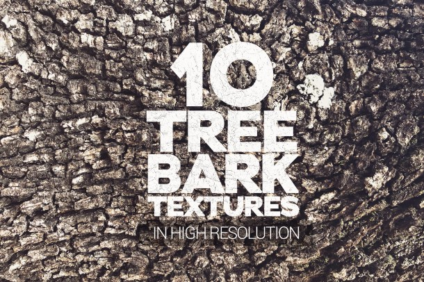 1 Tree Bark Textures Vol 1 x10 (2340)