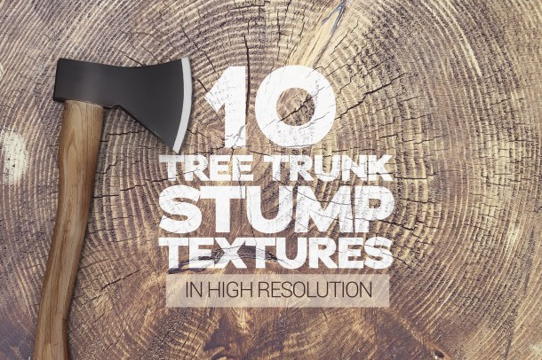 1 Tree Trunk Stump Textures x10 (2340)