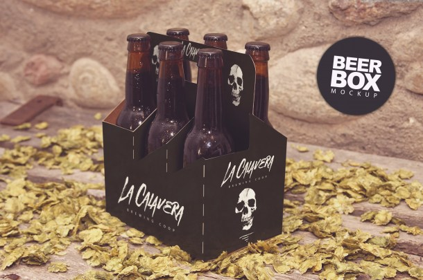 1B 6 Pack Beer Box Mockup (2340x1560)
